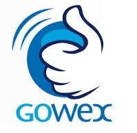 logoGowex